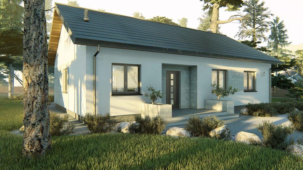 dom parterowy z dachem dwuspadowym KP-101 LUSTRO 1
